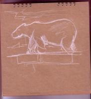 Zoo_polar