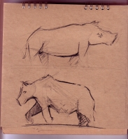 Zoo_rhino